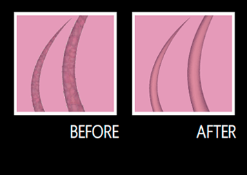 Perfect Long-Lasting Smooth